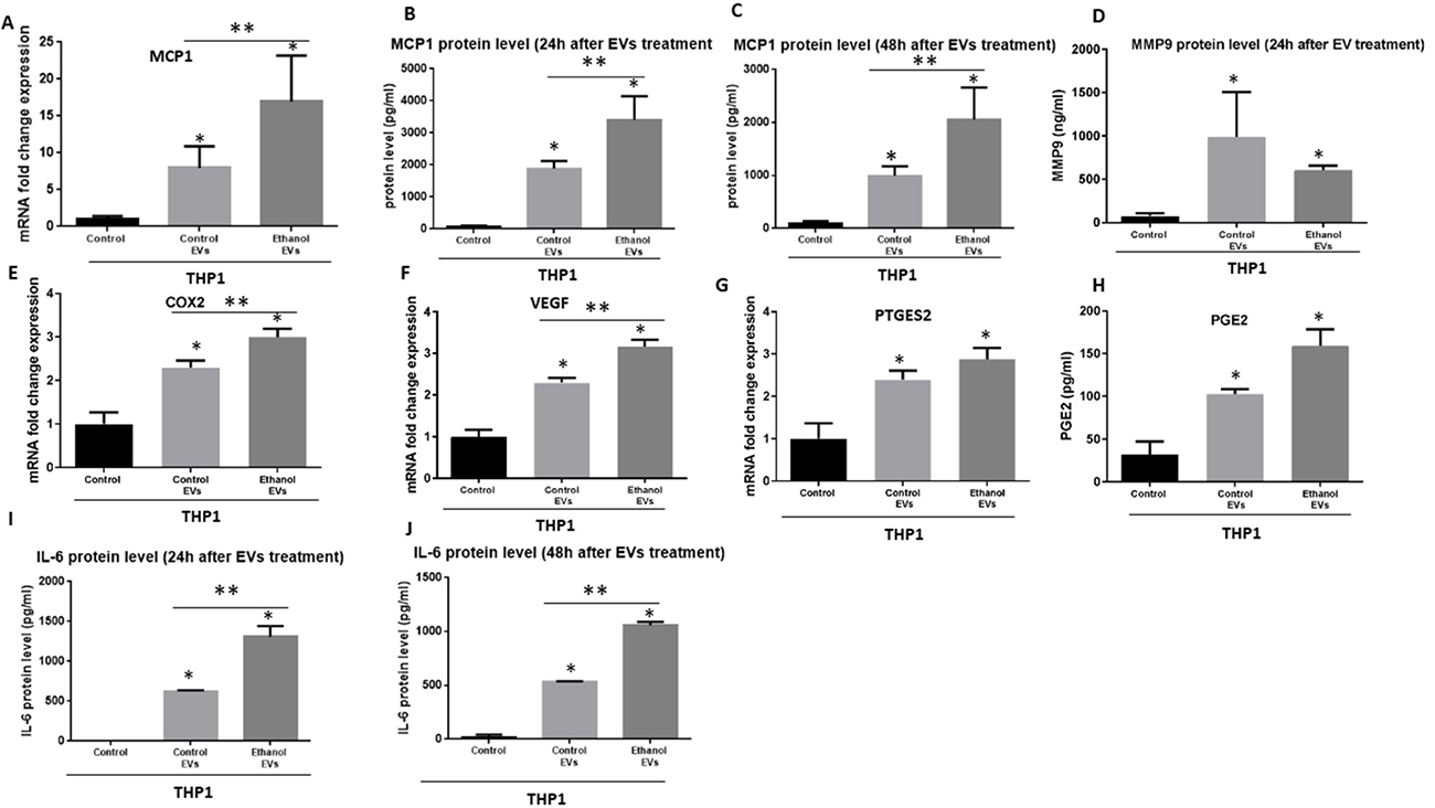 Immunomodulatory effects of EVs derived from OSCC cells (CAL27) on human THP1 monocytes.