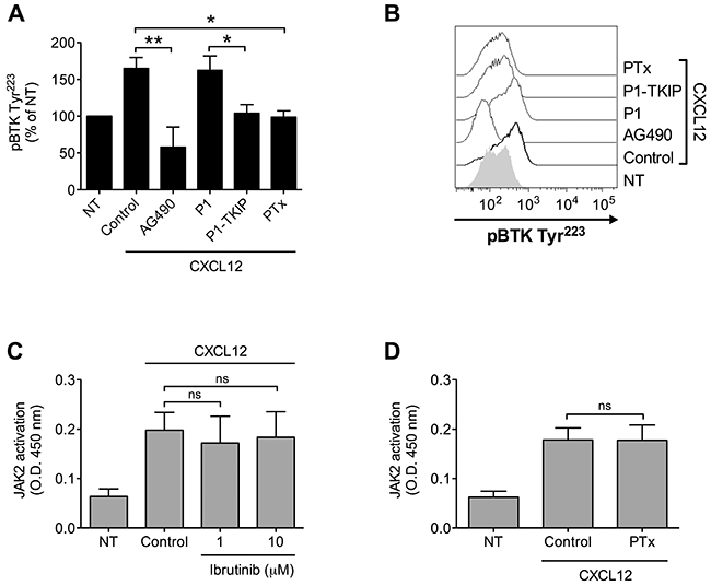 Chemokine-induced BTK activation relies on JAK2- and G-protein-mediated independent pathways.