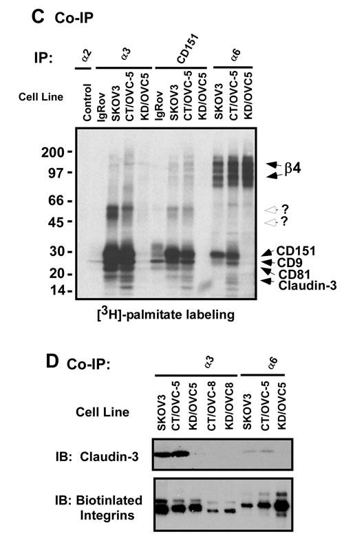 fig4a
