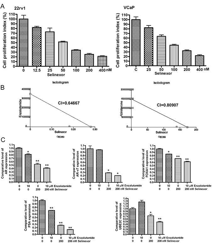 SINE potentiates the anti-cancer proliferation activity of enzalutamide and abiraterone.