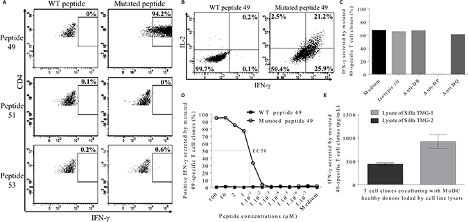 Characterization of neopeptide 49-specific CD4 T cell clones.
