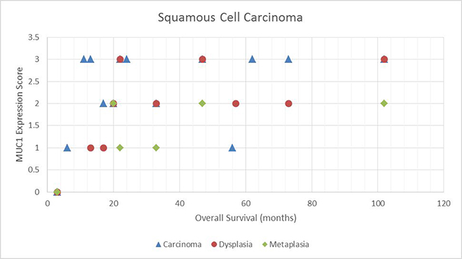 Scatter plot demonstrating the relationship between MUC1 expressions score and overall survival for squamous tumors.