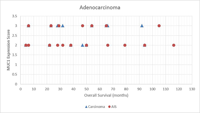 Scatter plot demonstrating the relationship between MUC1 expressions score and overall survival for adenocarcinoma in situ (AIS) tumors.