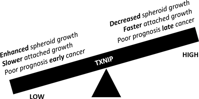 Schematic representation of the duality of TXNIP function as it pertains to peritoneal carcinomatosis/sarcomatosis.