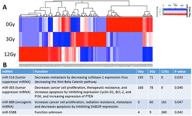 Analysis and comparison of miRNA contents within the non-radiation and radiation derived glioma exosomes.
