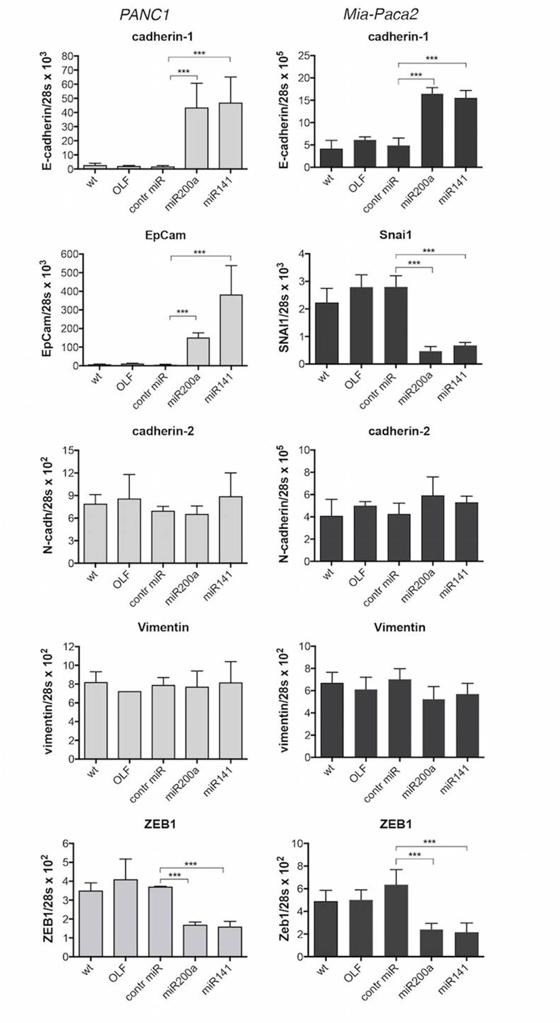 Effect of miR-200 over-expression on the expression of EMT and epithelial markers in PANC1 and Mia-Paca2 cells.