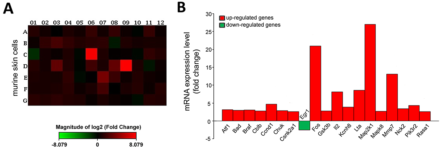 CRBPI deletion influences gene signaling in imiquimod-treated murine skin cells.
