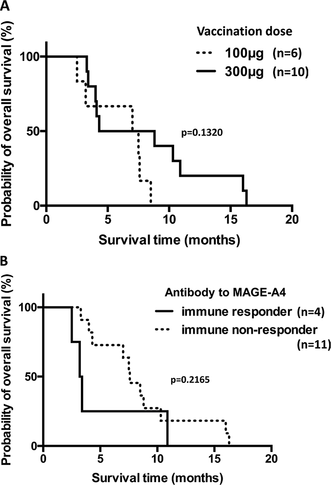 Overall survival of patients with refractory esophageal or head/neck squamous cell carcinoma who received the CHP-MAGE-A4 vaccine.