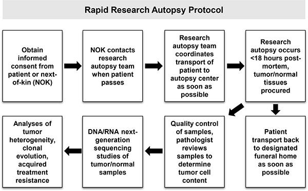 Overview of research autopsy protocol.