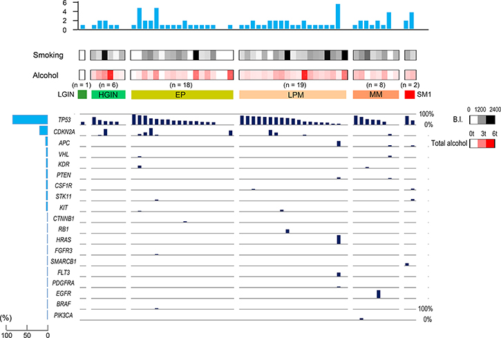 Hot spot cancer-related gene mutations in each stage of esophageal neoplasia.
