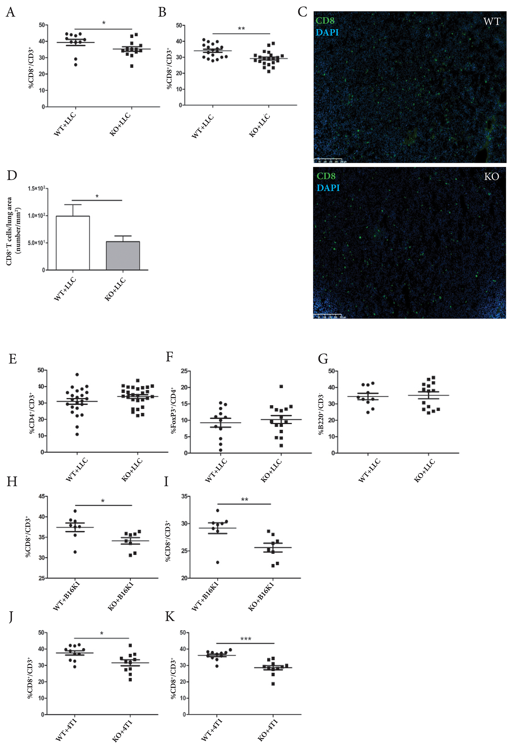 ADAM28 deficiency affects CD8+ T cell mobilization to splenic and pulmonary tissues in tumor-bearing mice.