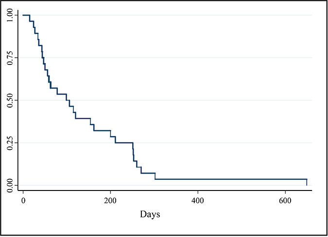 Kaplan–Meier survival curve of PFI (days) for all dogs enrolled in phase I and II portions of clinical trial (n = 28).