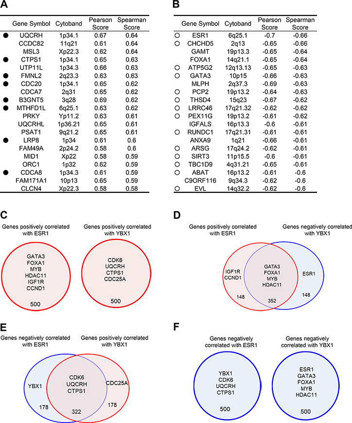 Genes correlated with YBX1 are associated with prognostic factors.