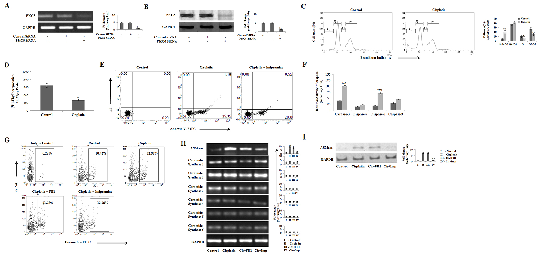 Cisplatin inhibits cell cycle progression and induces apoptosis in PKCδ silenced B16F10 cells via ceramide generation.