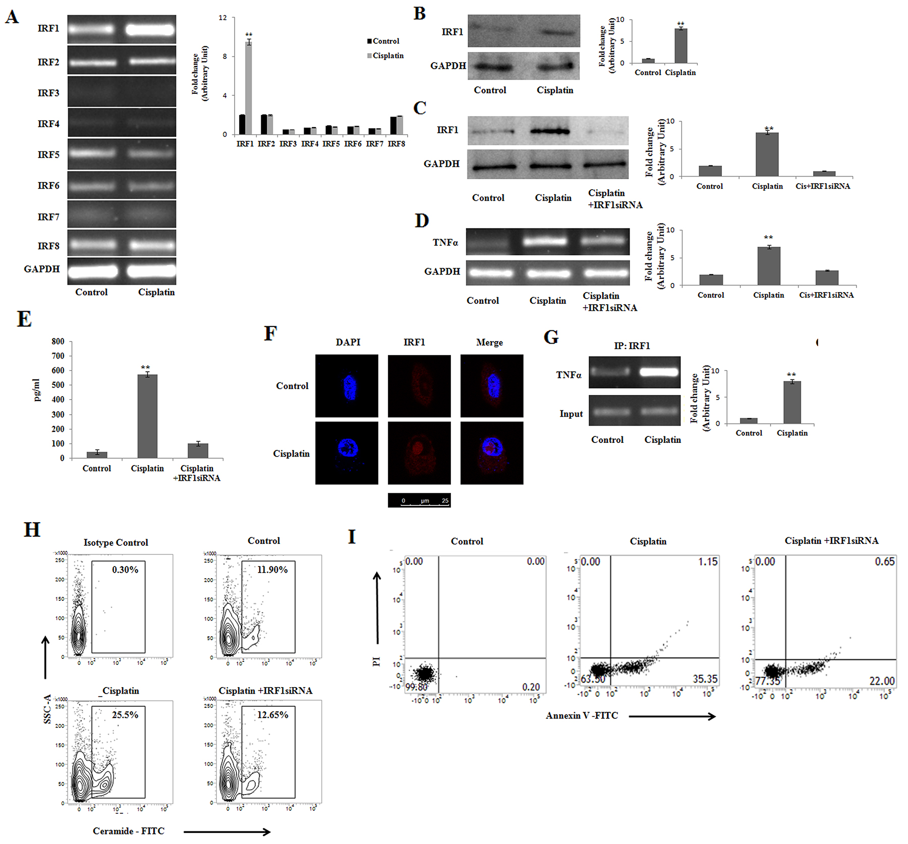Cisplatin induces IRF-1 dependent TNFα activation for initiation of apoptosis in PKCδ silenced B16F10 melanoma cells.