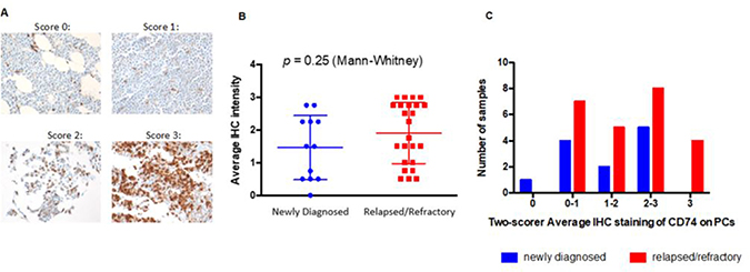 Expression of CD74 in bone marrow samples from patients with newly diagnosed and relapsed / refractory multiple myeloma.