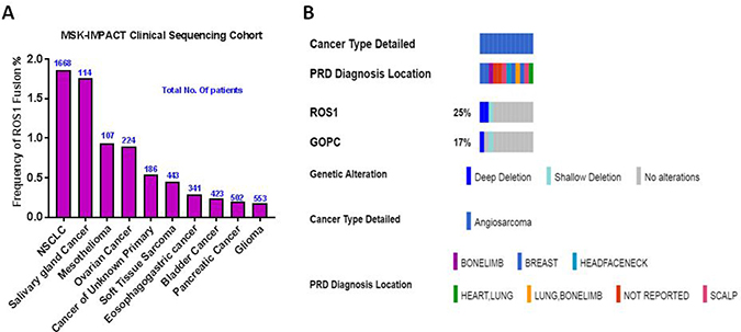 Frequency of ROS1 gene fusions in cancer.