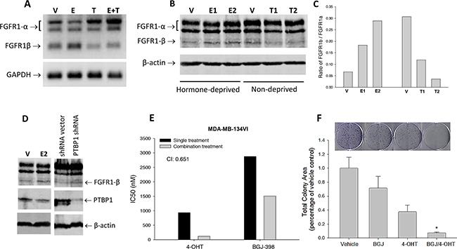 Estrogen regulation of FGFR1 splicing in breast cancer cells.