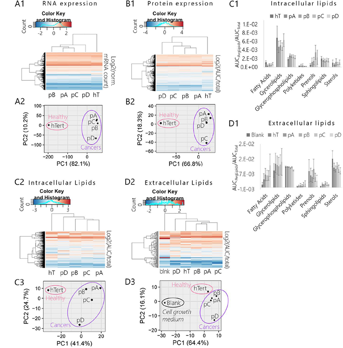 Comparison of mRNA, protein, and lipid expression profiles of pancreatic cancer subclones (pA, pB, pC, pD) and healthy control (hT).
