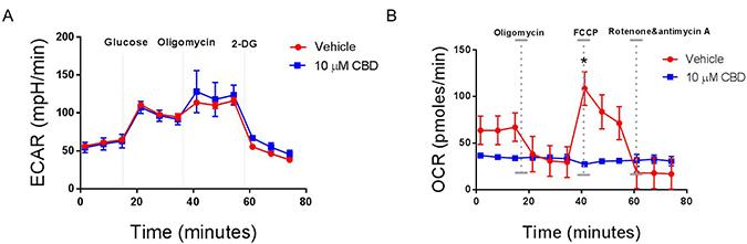 CBD alters mitochondrial respiration in neuroblastoma cells.