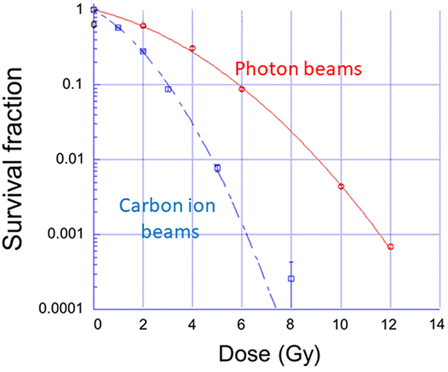 Survival fractions in LM8 cells irradiated with photon and carbon ion beams.