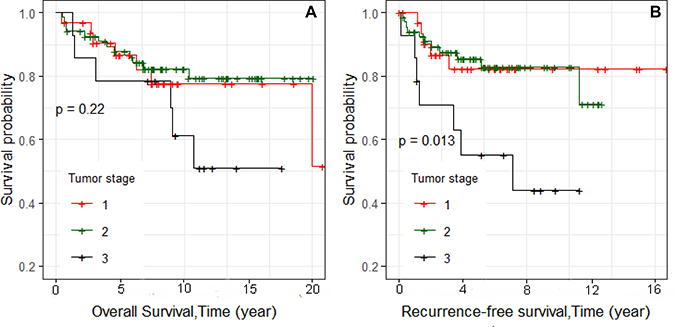 Kaplan–Meier analyses of overall and recurrence-free survival and stage for 115 TNBC cases (Figure 2A and 2B, respectively).