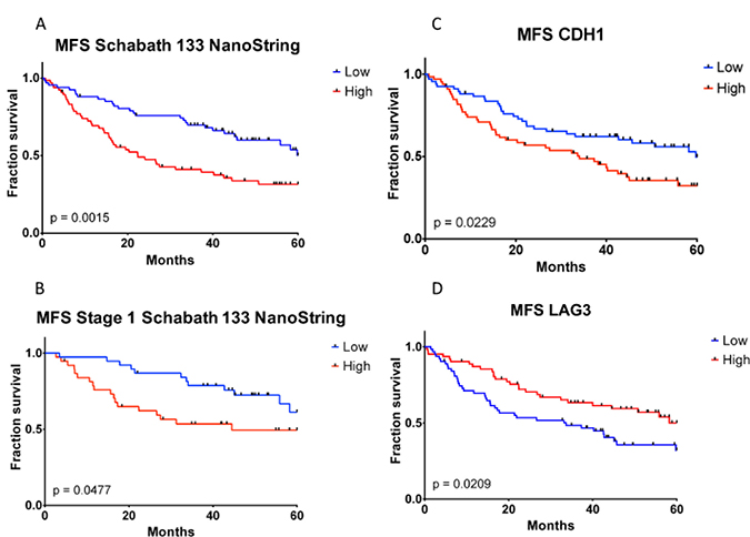 Kaplan–Meier metastasis-free survival analysis of TGFβ-EMT and TGFβ-EMTN signatures and CDH1 and LAG3 immunohistochemistry staining in formalin-fixed paraffin-embedded samples.