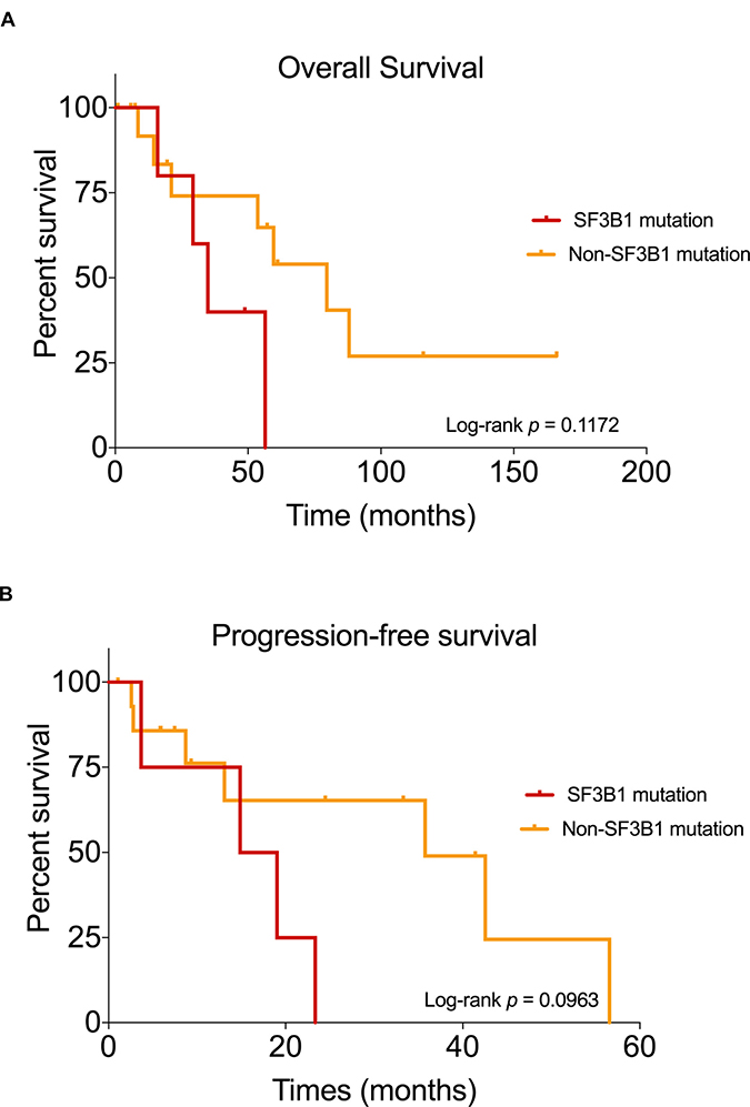 Kaplan–Meier curves showing the survival outcomes of mucosal melanoma patients.