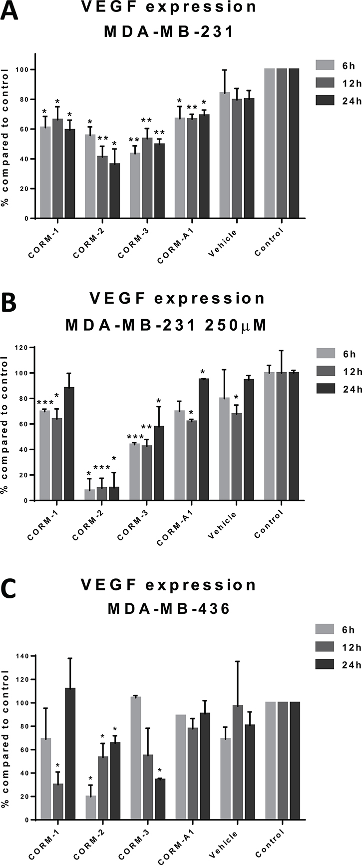 VEGF expression after CORM treatments.