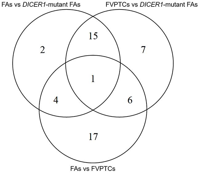 Venn diagram of differentially expressed miRNAs.