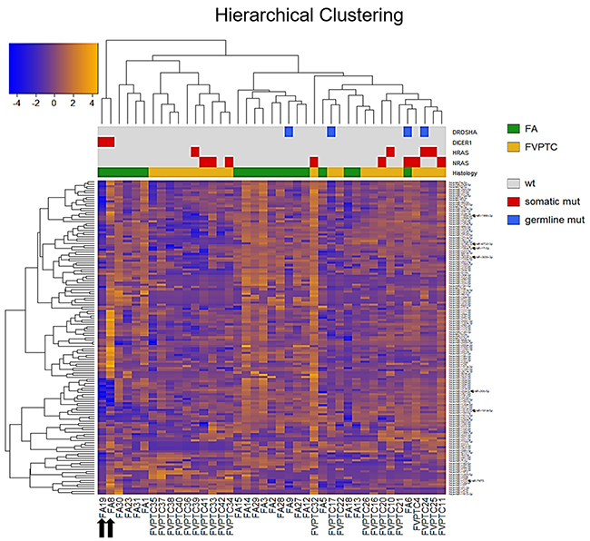Hierarchical clustering.