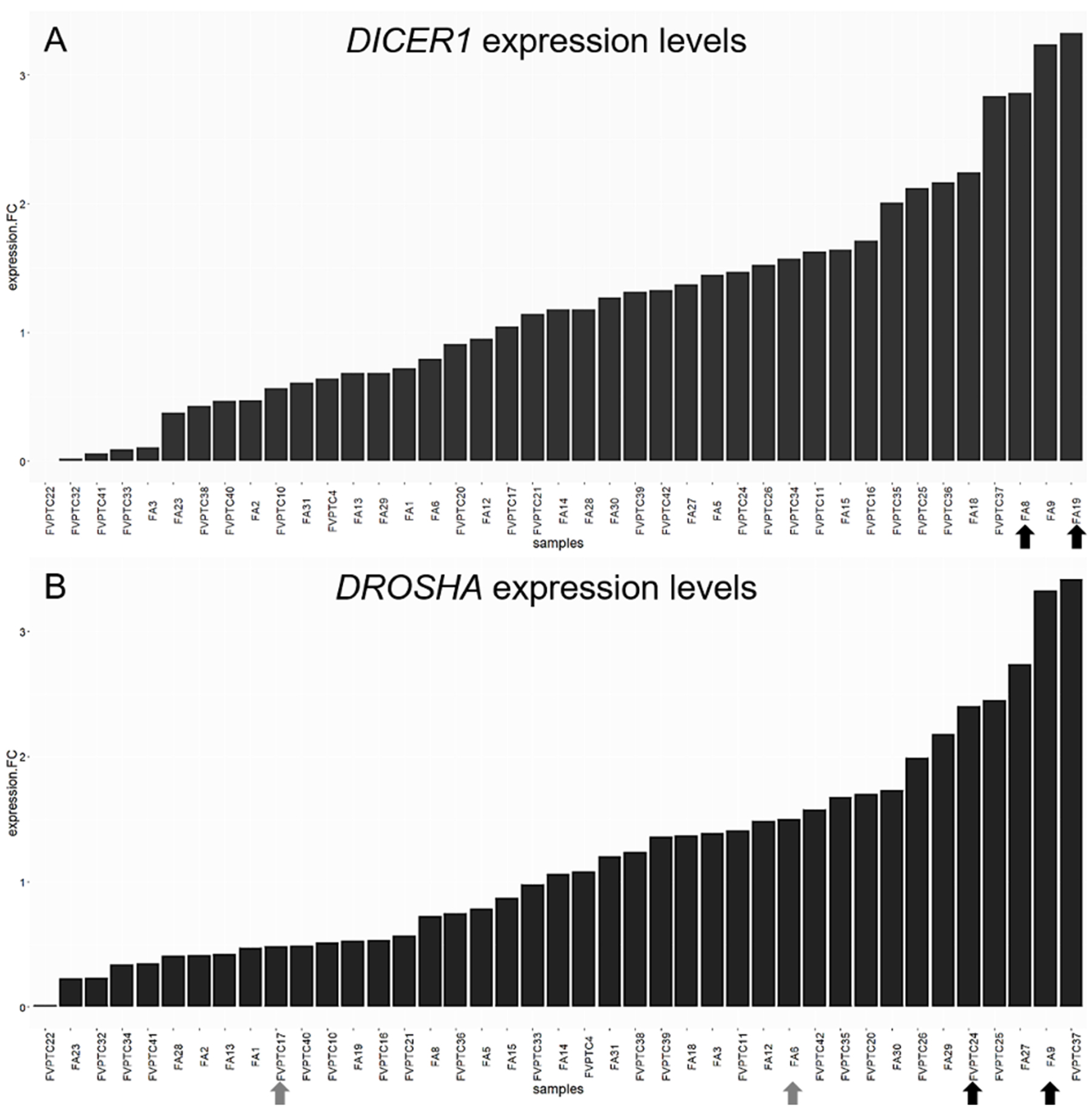DICER1 and DROSHA expression levels.