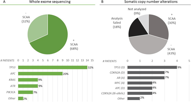 Selected cancer-associated alterations (SCAAs) identified in cfDNA.