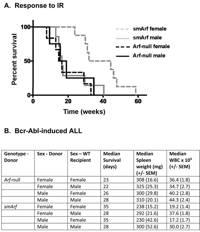 Differential responses of females and males to oncogenic challenge.