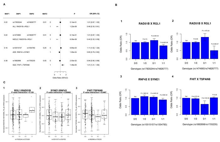 Interaction analysis at candidate gene pairs.