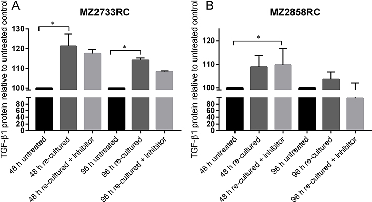 Determination of secreted TGF-β1 from stimulated RCC cells.