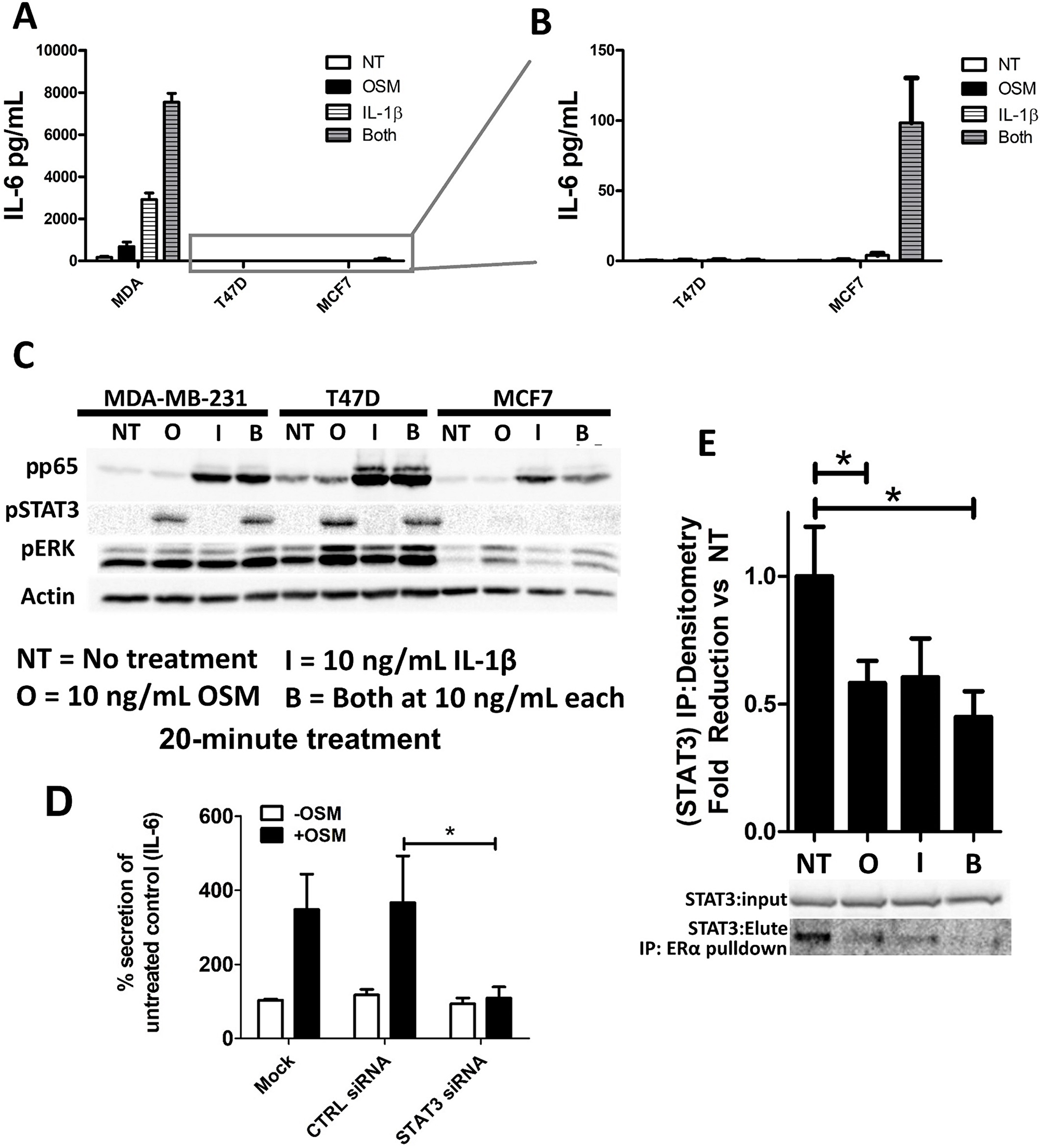 OSM and IL-1β activate separate signaling pathways and synergistically induce IL-6 secretion.