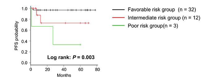 Kaplan–Meier survival curve of PFS in risk stratification.