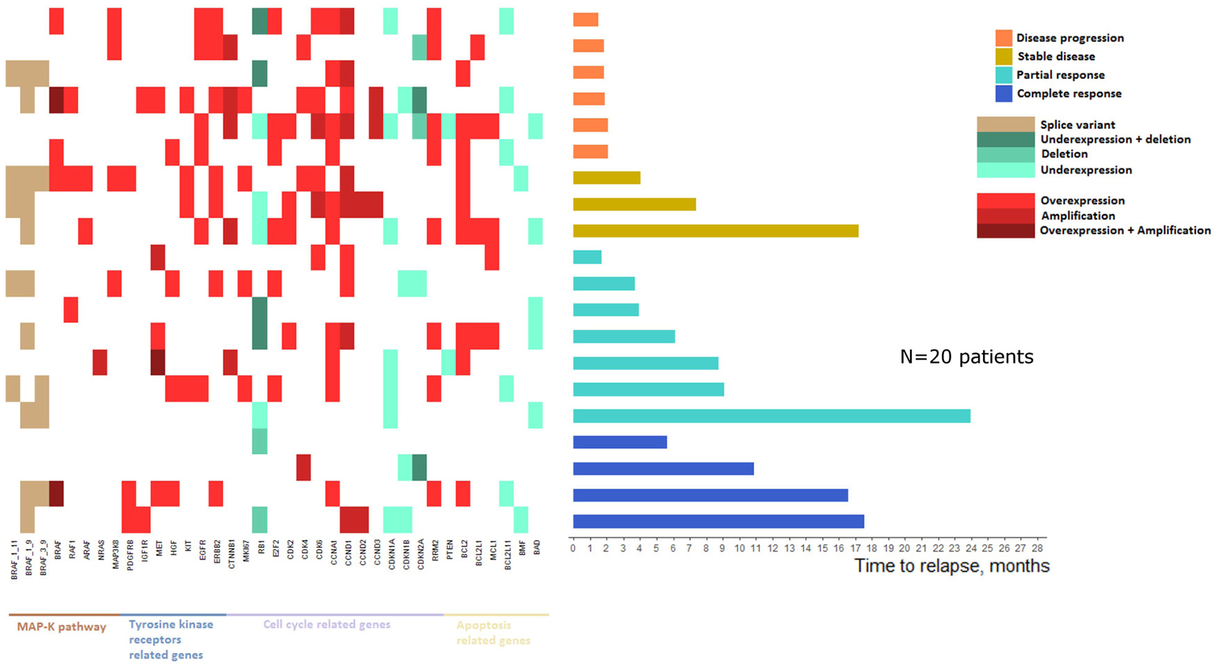 Landscape of mRNA expressions and DNA alterations at relapse reported to baseline status.