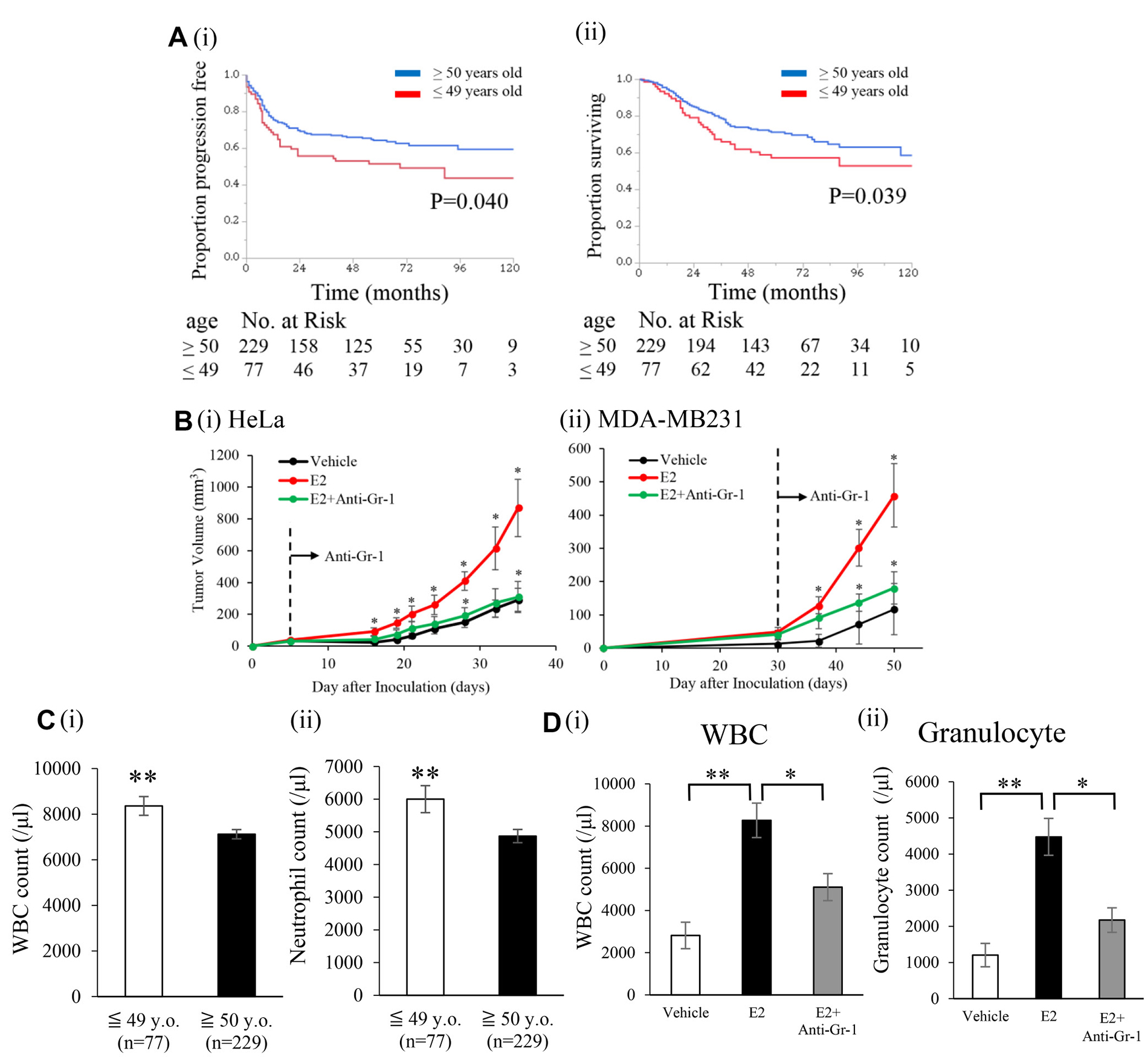 Effects of an exogenous E2 treatment on the progression of ERα-negative cervical/breast cancers.