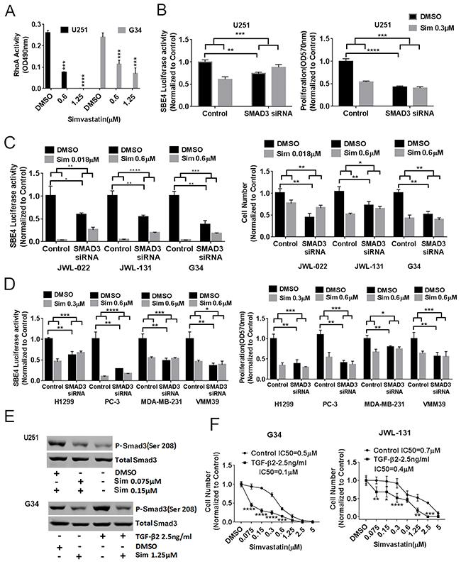 Statin acts on TGF-β through RhoA and Smad3.
