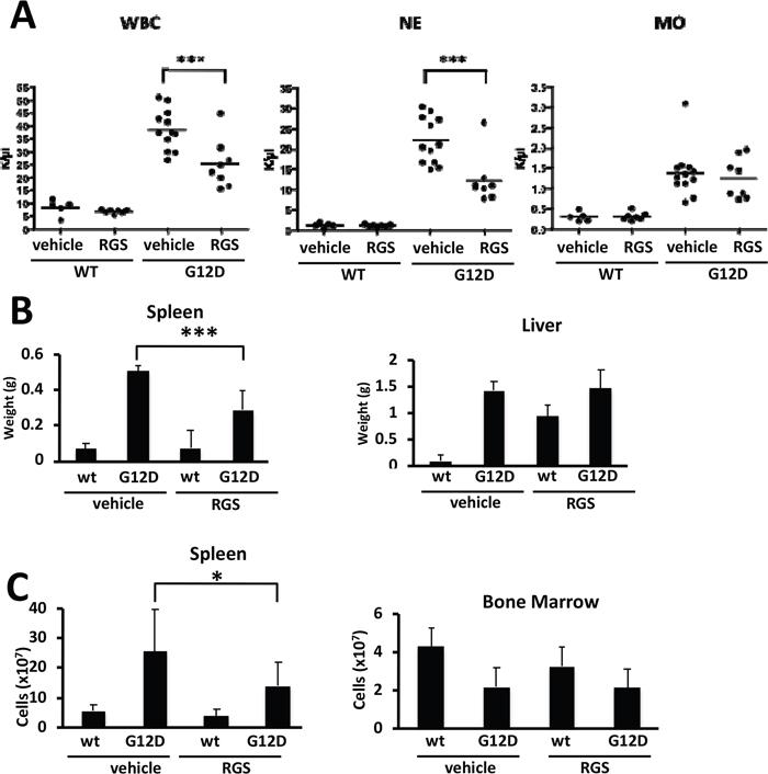 Effects of rigosertib on K-RASG12D-driven myeloproliferative neoplasia.