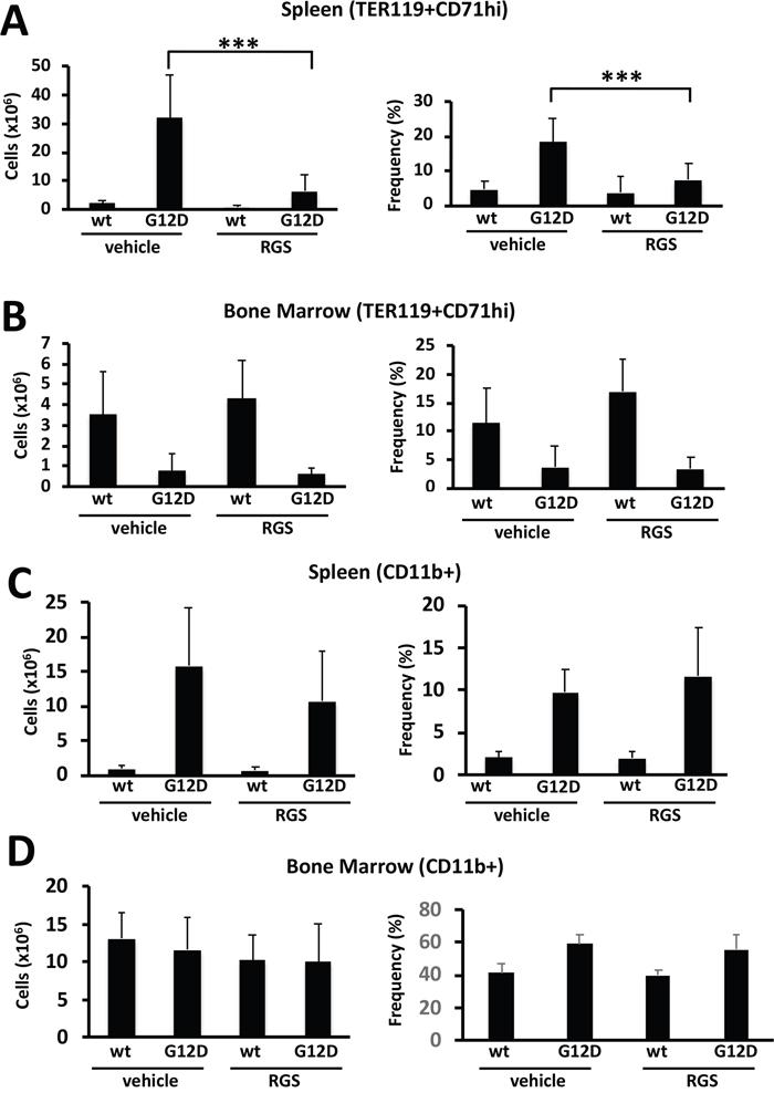 Rigosertib modulates KRASG12D-dependent erythroid and myeloid phenotypes in vivo.