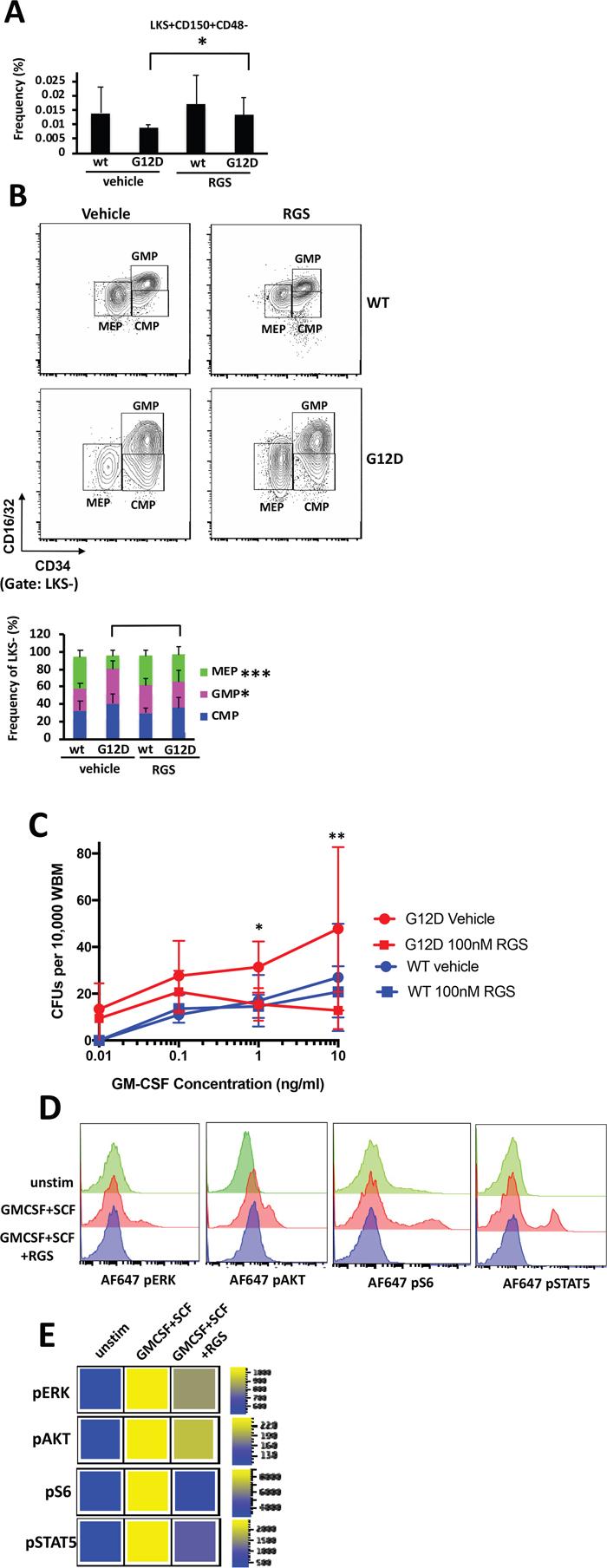 In vitro and in vivo effects of rigosertib on KRASG12D hematopoietic stem cells and progenitors.