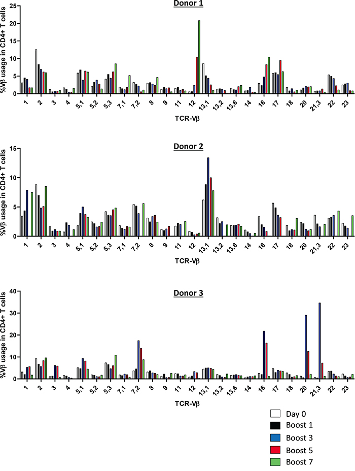 Vaccine-activated CD4+ T cells display a diverse polyclonal TCR-Vβ repertoire.