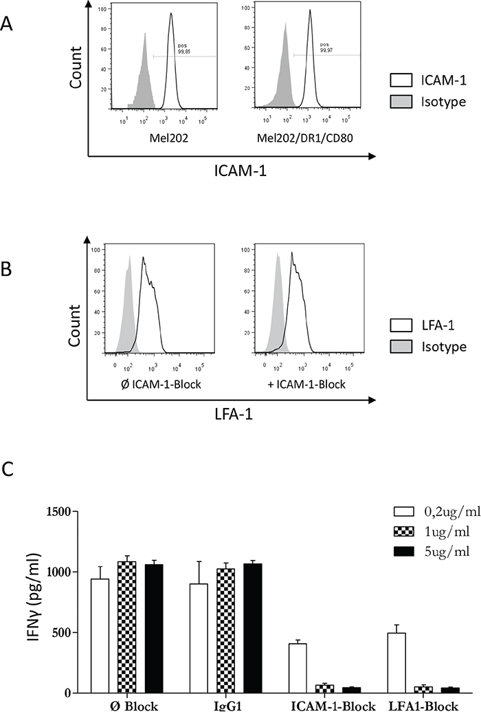 The ICAM-1/LFA-1 interaction is required for activation of CD4+ T cells by MHC II uveal melanoma vaccines.