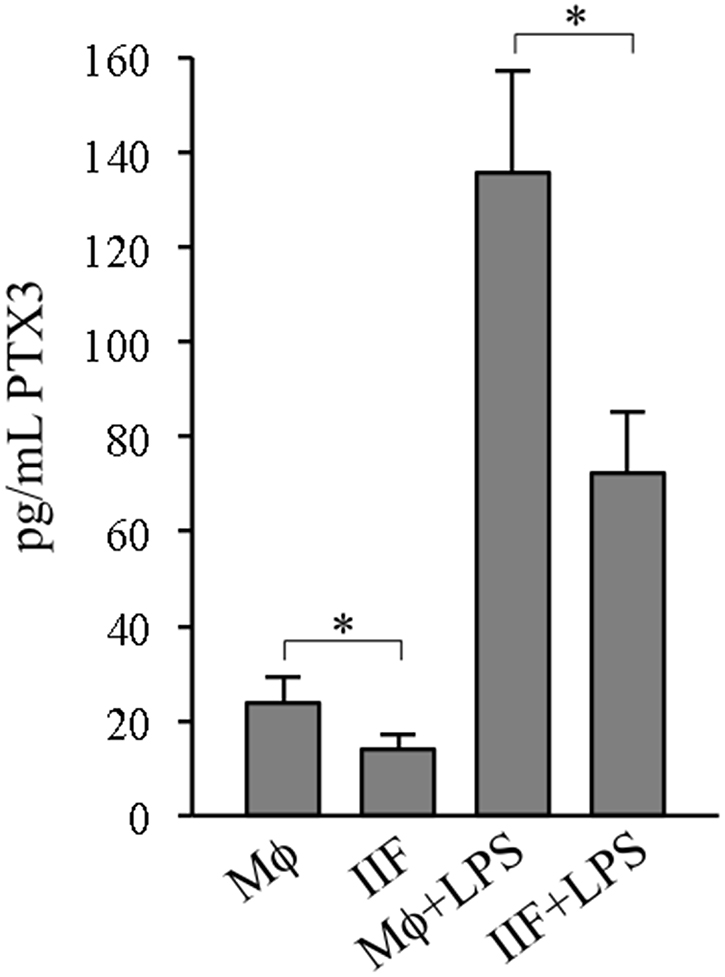 PTX3 release in differentiated cells.