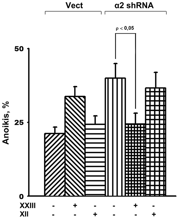 Effect of of Akt isoform inhibitors on anoikis of SK-Mel-147 cells.