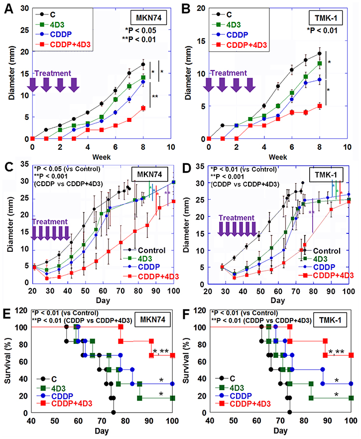 Effect of concurrent treatment with CDDP and 4D3 on growth of gastric cancer cells in nude mice.