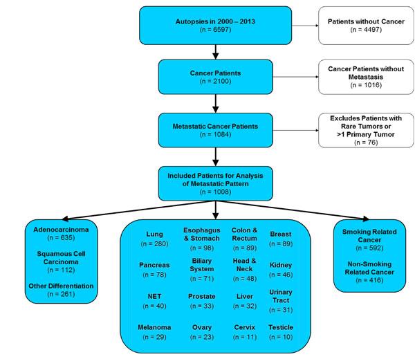 CONSORT statement (flow diagram).